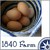 1840farmeggsbutton