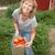 Tomato_harvest