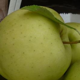 ohh la la chopped apple salad
