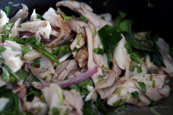 Thai Spicy Chicken Salad