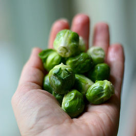 """Hidden Jewels"" Brussels Sprouts"