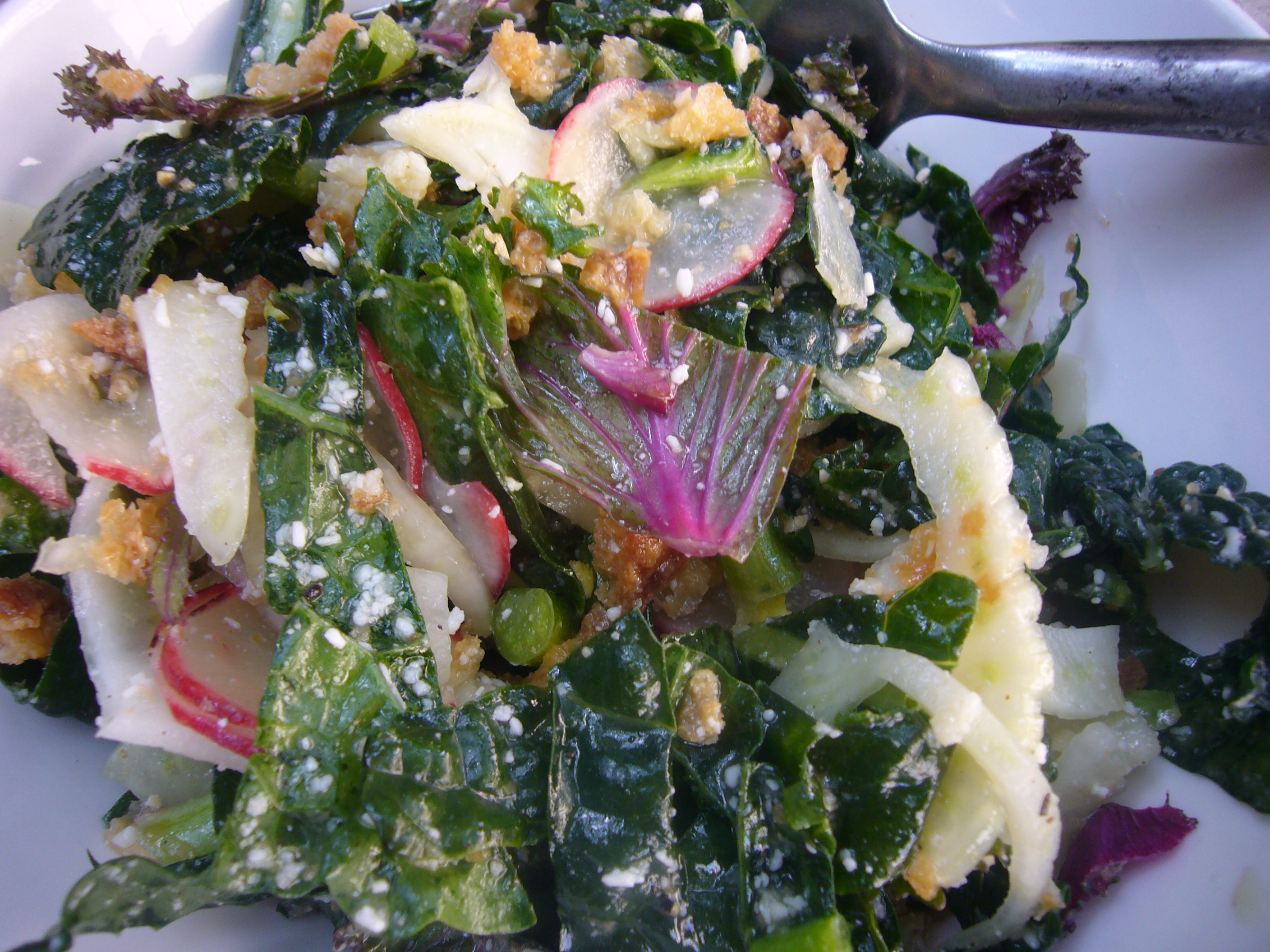 Kale and Fennel Salad