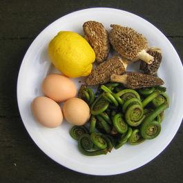 Fiddlehead and Morel Eggs Benedict