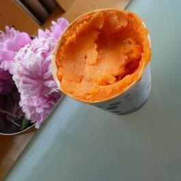 Carrot Sorbet