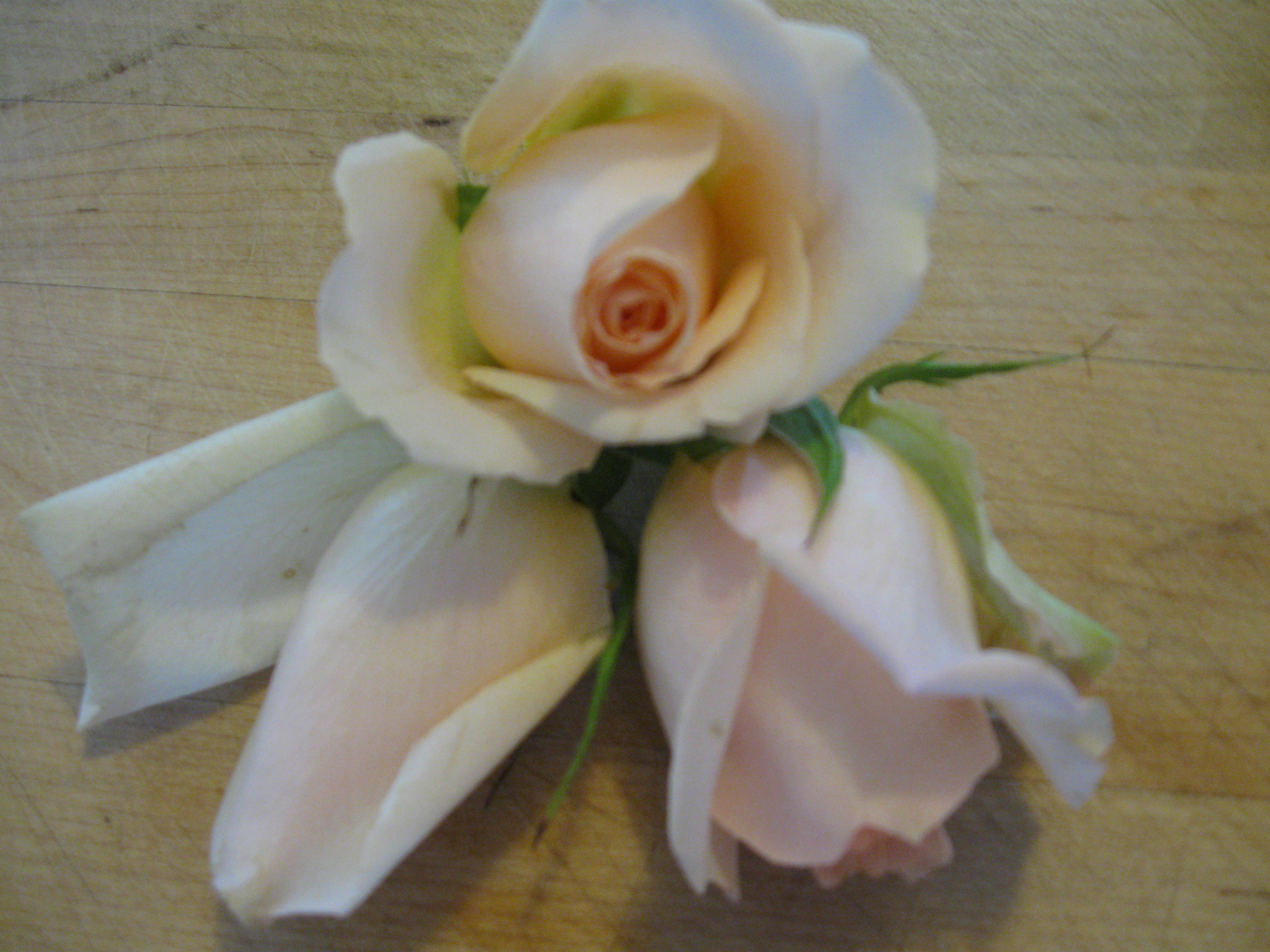 Rose-Scented Gelato-White Chocolate Bon Bons