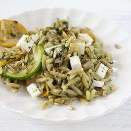 Orzo with mixed herb pistou
