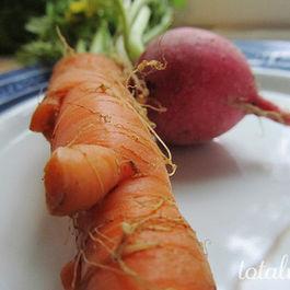 Carrot_radish08