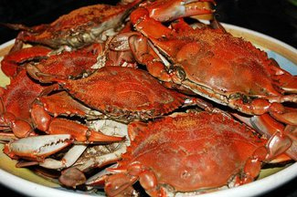 Steamed_crabs-2