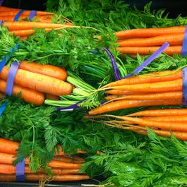 """Nur Karotten"": carrots, deconstructed"