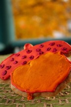 Acorncookie