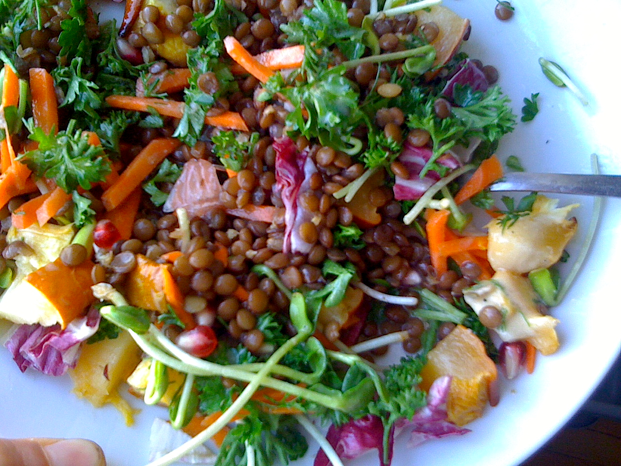 Lentil and Roasted Pumpkin Salad