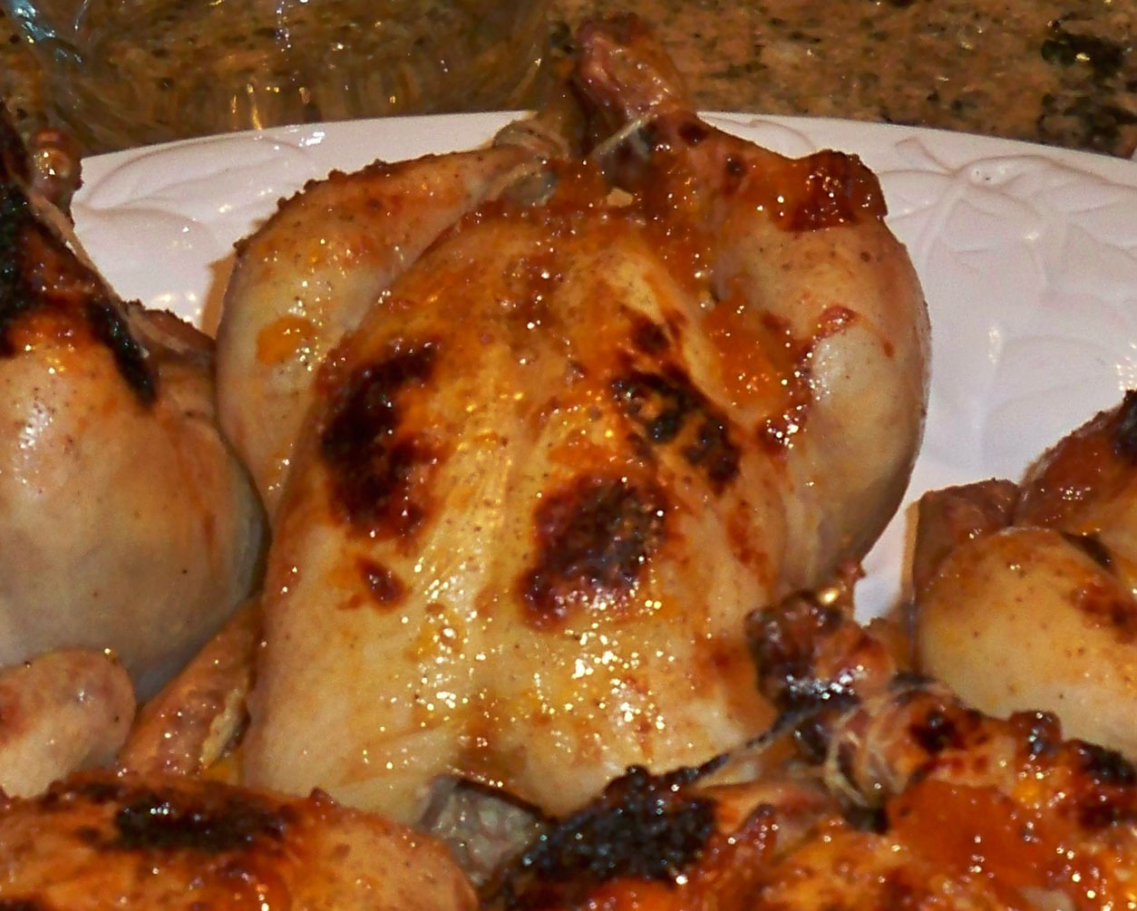 Cornish Game Hens with Apricot & Date Couscous Stuffing