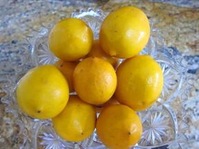 Meyer_lemons_for_curd