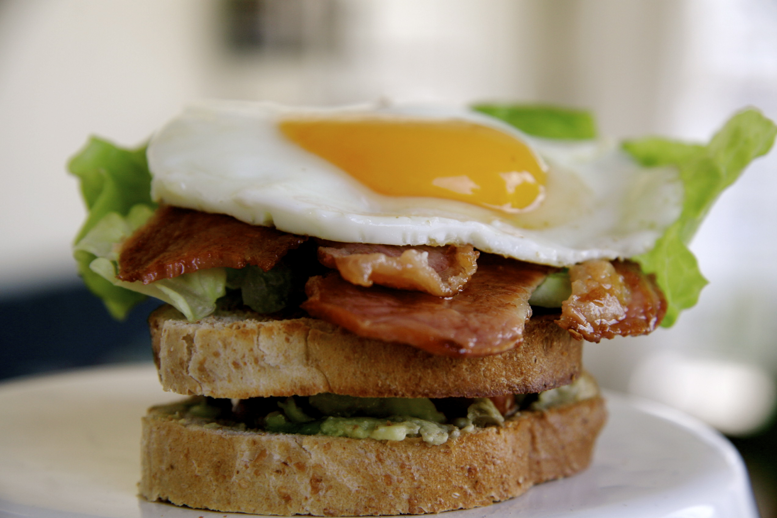 Bacon, Lettuce, Tomato, Avocado and Fried Egg Sandwich Recipe on ...
