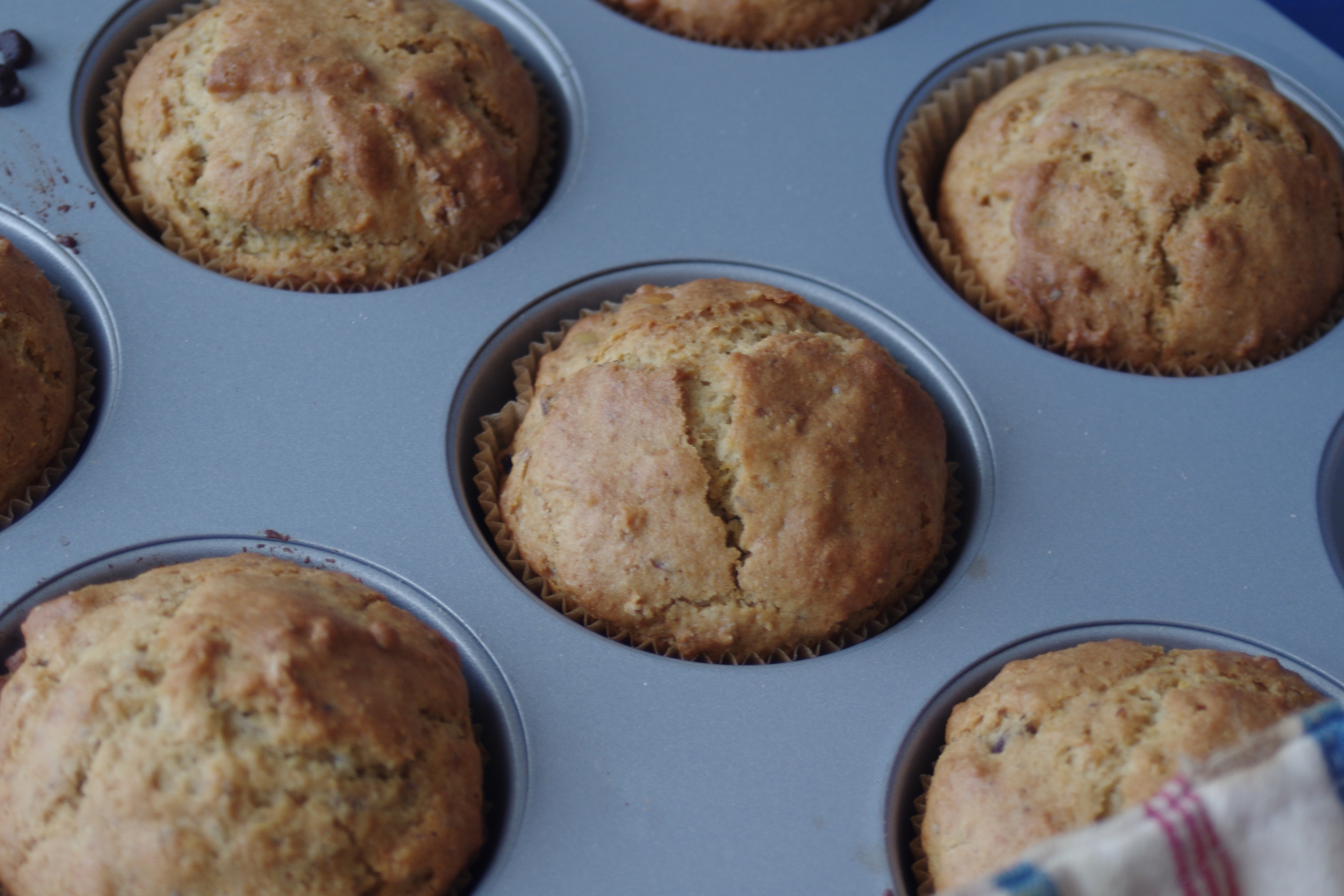 Super Kamut Dried Fruit Muffins (A case of serendipity and snowfall)
