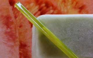 Celery Prosecco Pops, Citrus Gelatine