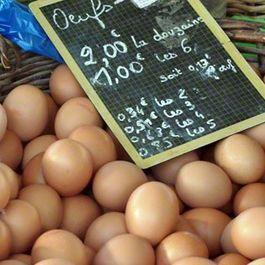 Farmers-market-pictures-eggs-d