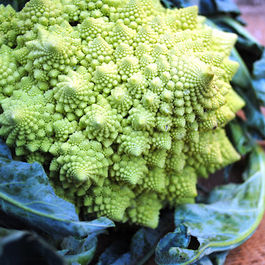 Super_healthy_romanesco_salad_recipe