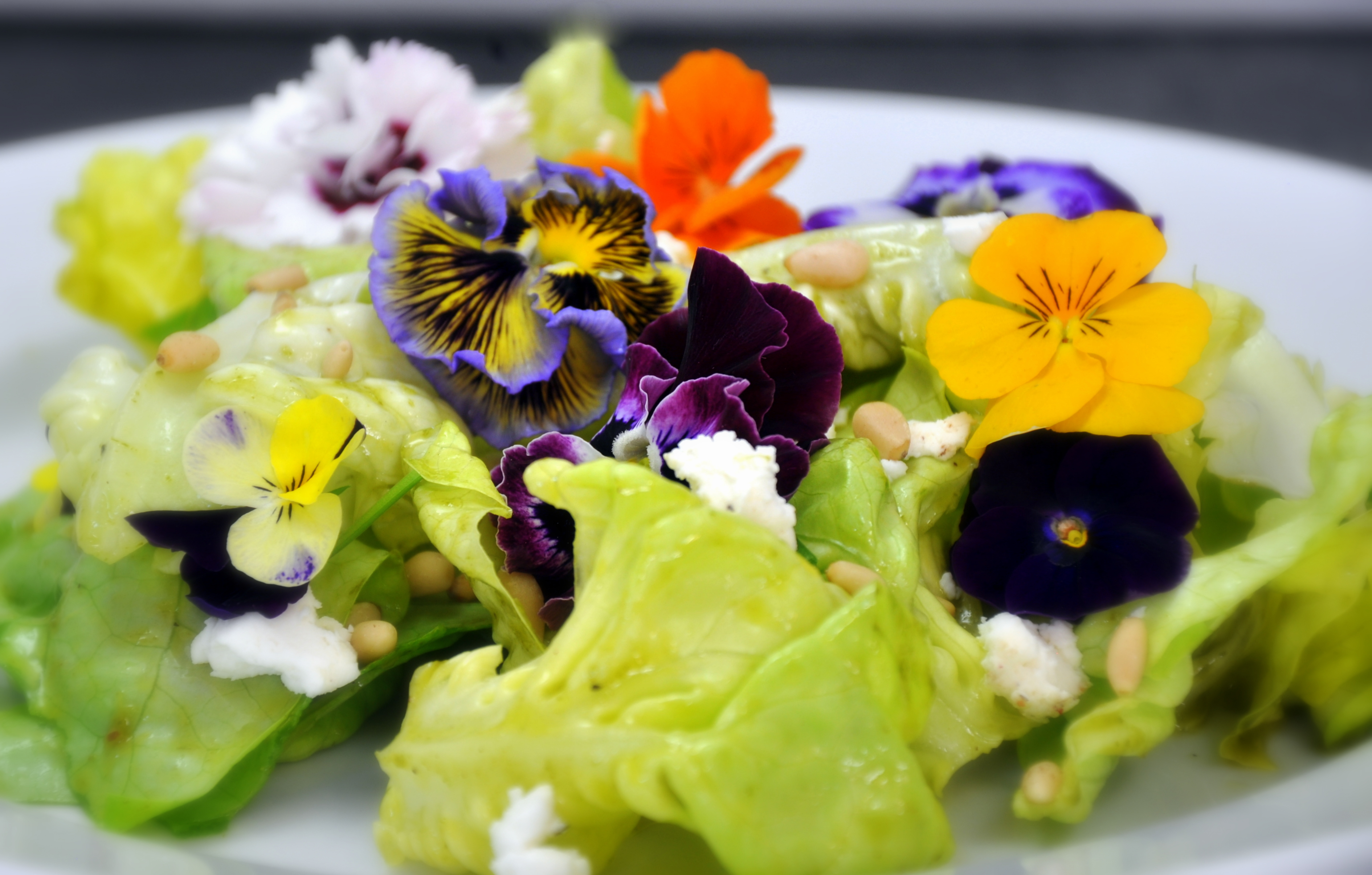 Spring Bouquet Salad with Basil-Chive Vinaigrette, Chèvre, and Pine Nuts