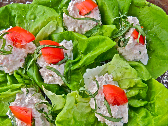 Hand-Held Shrimp Salads