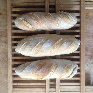Three Rustic Levain Batards