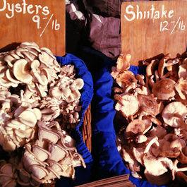 Wild Mushroom Bruschetta