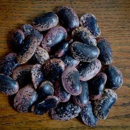 Beans by édit