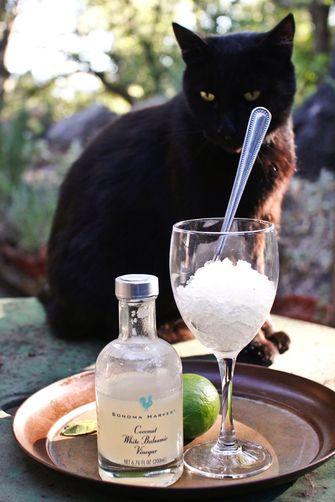 Coconut and Kaffir Lime Balsamic Granita