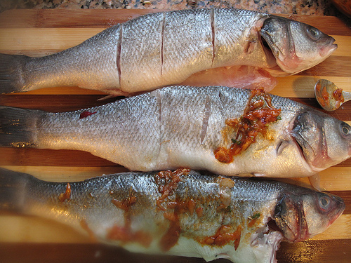 Jerk Fish