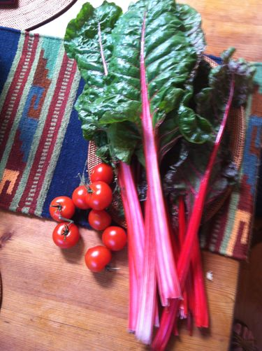 Indian Spiced Swiss Chard