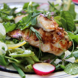 Fresh Summer Salad with Fistfuls of Herbs