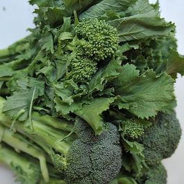 Broccoli_rabe