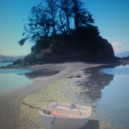 Hog_island_001