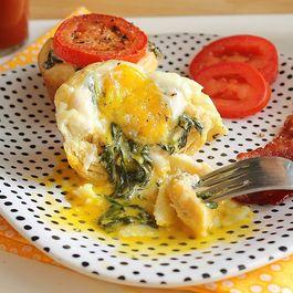 Eggflorentinecupsa
