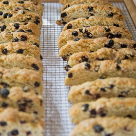 Meyer Lemon Biscotti with Dried Wild Blueberries
