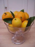 Roast_chicken_with_meyer_lemons
