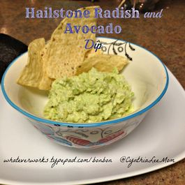 Hailstone Radish and Avocado Dip