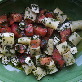 Mezi_rigatoni_with_tomatoes_lots_of_herbs__amp__mozzarella