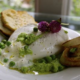 Burrata with Minty Pea Pesto