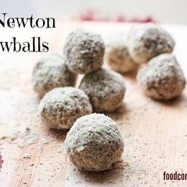 Fig Newton Snowballls