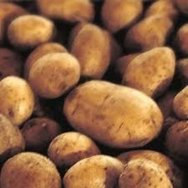 Best rustic russet mashed taters
