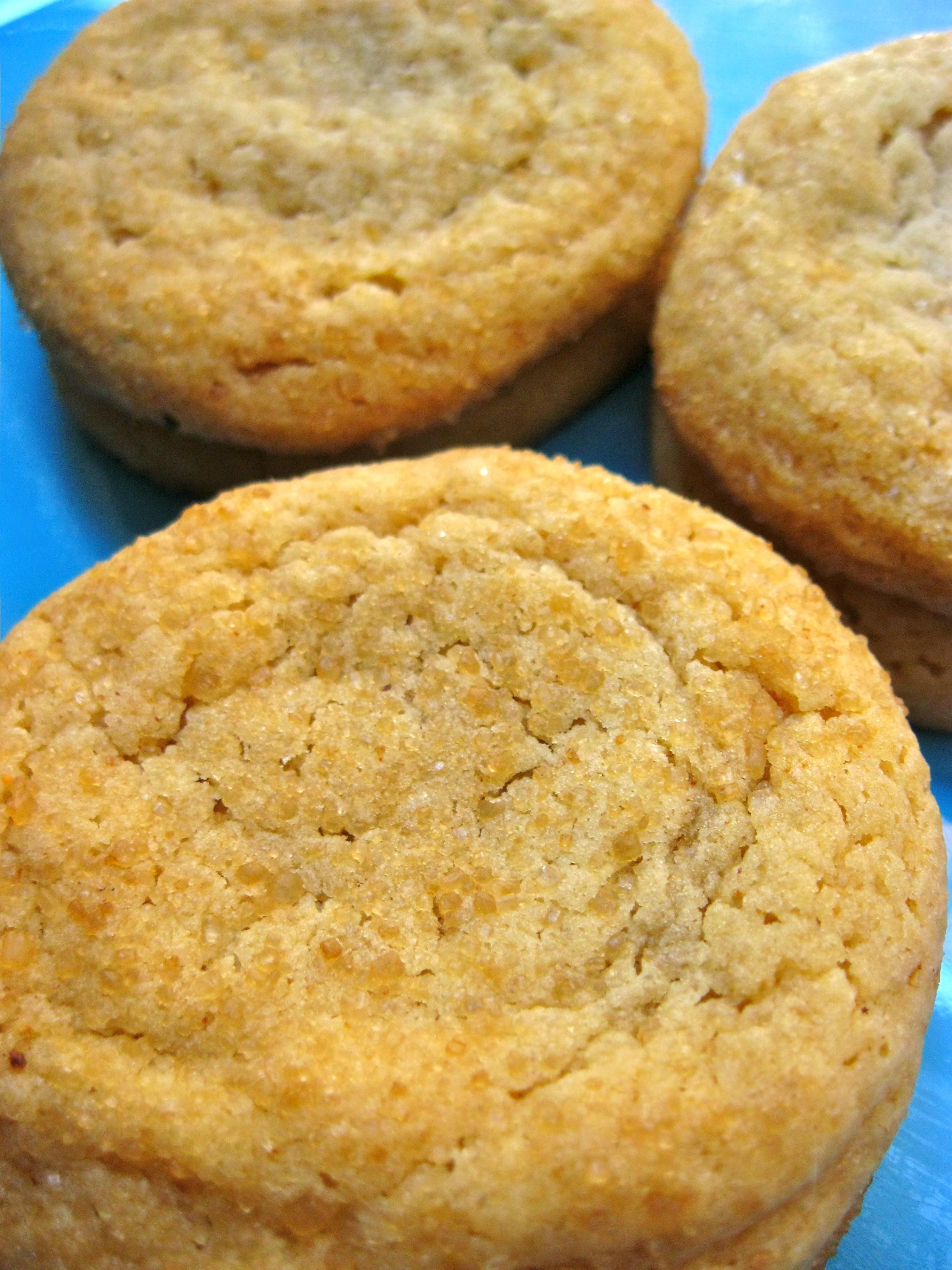 Sassy Sugar Cookies