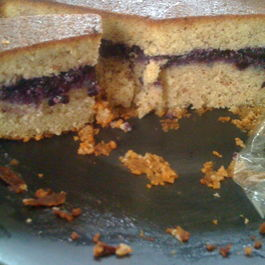Blueberry Almond Rum Cake