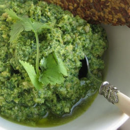 Cilantro Sunflower Seed Pesto