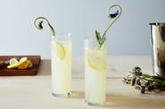 Lemon Lavender Gin Rickey