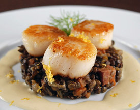 Scallops-with-fennel-1