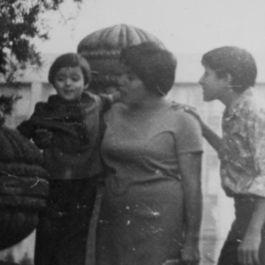 Mom's Silken Aubergines