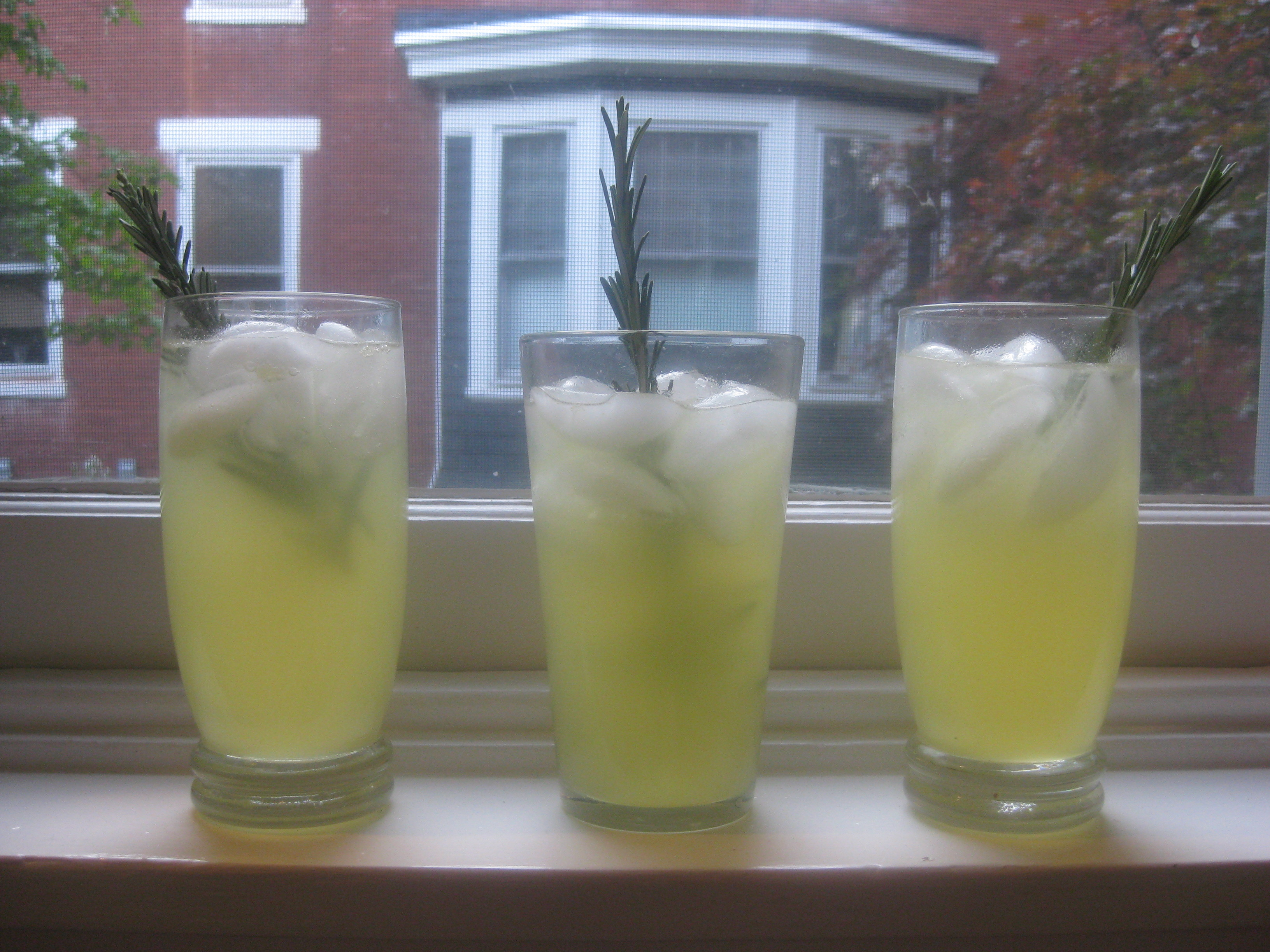 Lemon Rosemary Fizz