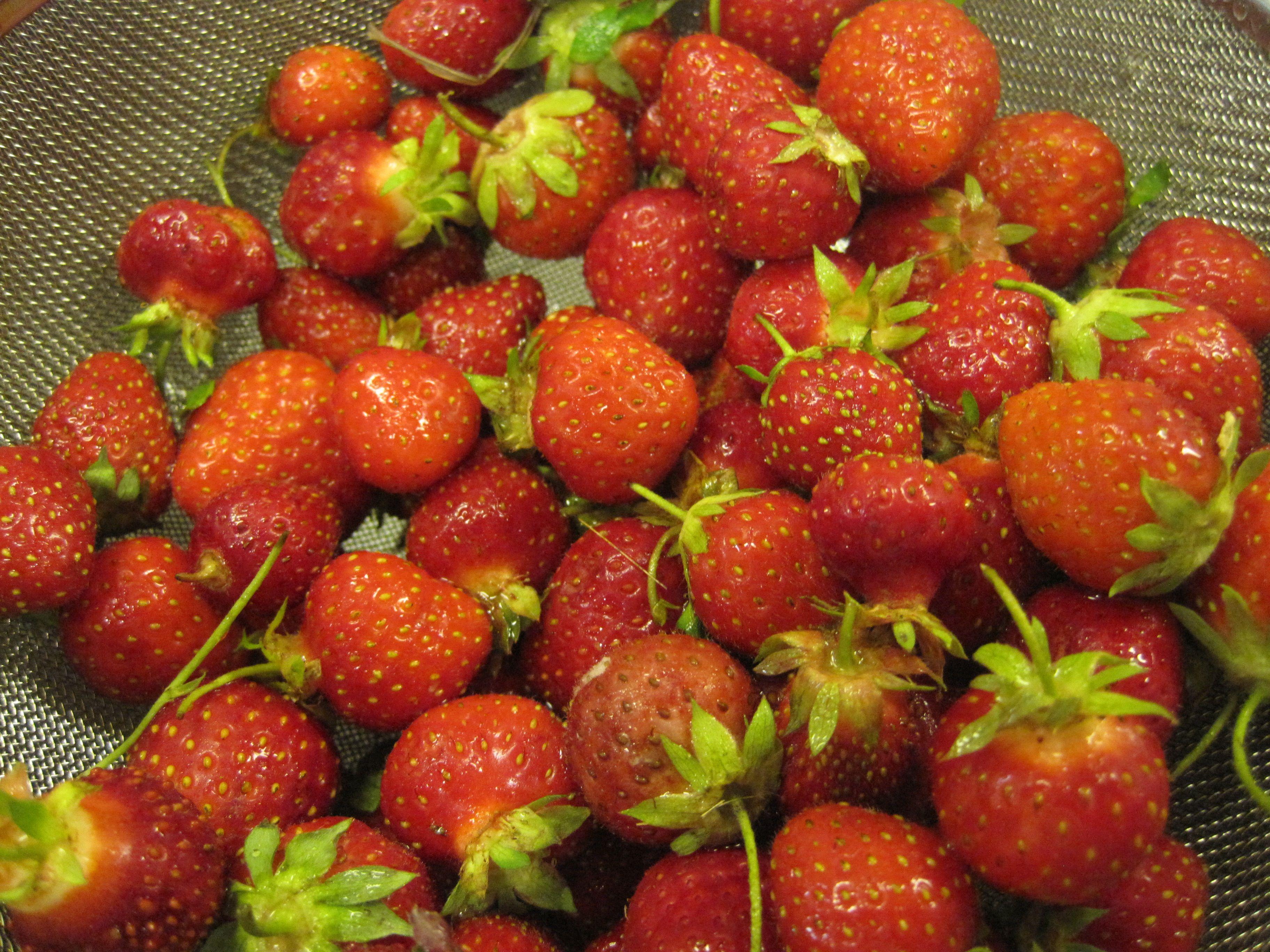 Lemon Verbena Scented Strawberry Peach Conserves