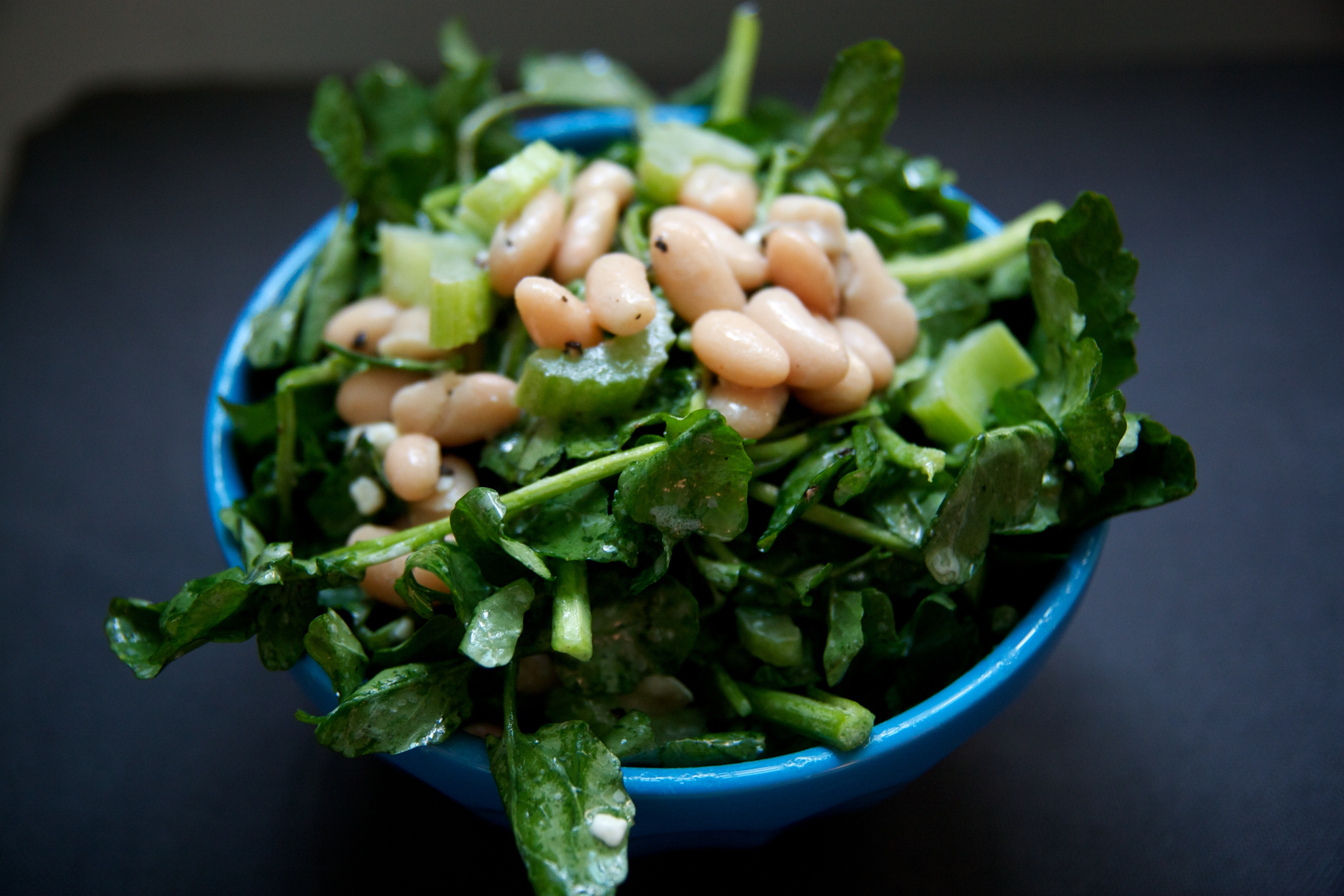 White Bean, Celery and Cress with a Blue Cheese Vinagrette